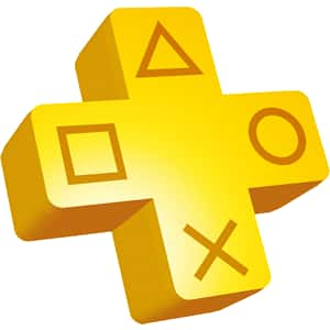 PS Plus/Network Cards