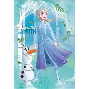 Set 10 caiete DISNEY Frozen, dictando, A4, 40+2 file, legatura capsata, diverse modele