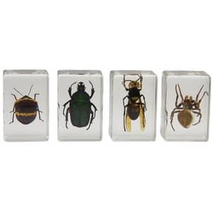 Kit 4 specimene insecte CELESTRON 3D Bug Specimen kit 2