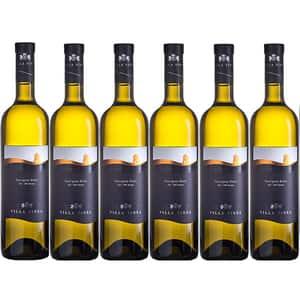 Vin alb sec Villa Vinea Sauvignon Blan Selection, 0.75L, 6 sticle