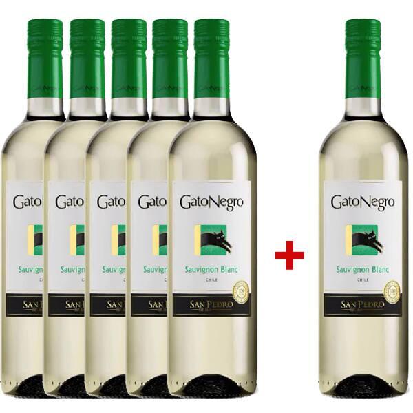 Vin alb sec San Pedro Gato Negro Sauvignon Blanc 0.75L, 5+1 sticle