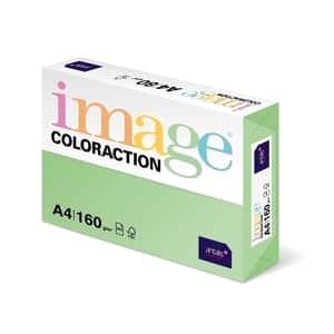 Carton color COLORACTION, A4, 250 coli, verde forest
