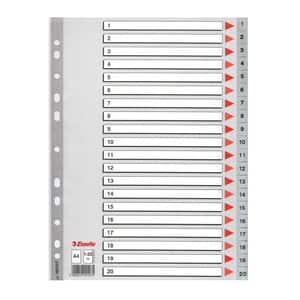 Separator ESSELTE 1-20, 225 x 297 mm, plastic, 11 perforatii; format A4, gri
